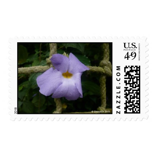 Purple flower and rope | Postage