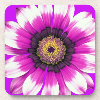 Purple Flower Beverage Coasters