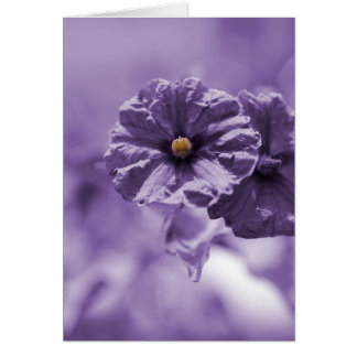 Purple Flower Blank Greeting Card