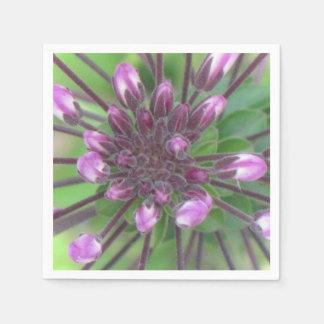 Purple Flower Bud Napkin Standard Cocktail Napkin