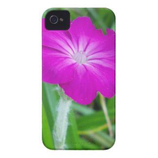 Purple Flower iPhone 4 Cases
