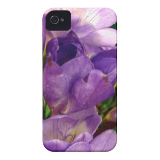 Purple Flower Case-Mate iPhone 4 Cases