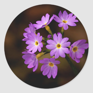 purple flower classic round sticker