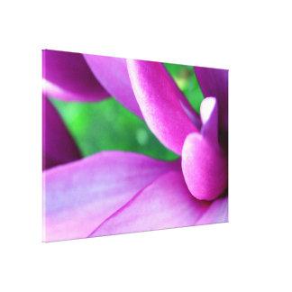 Purple Flower Close Up Canvas Print