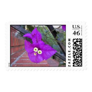Purple Flower Face Stamp