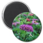 Purple Flower Fridge Magnets