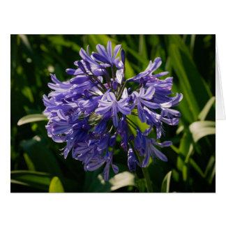 Purple flower head card