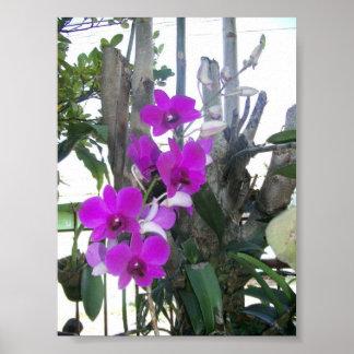 Purple Flower Home Decor