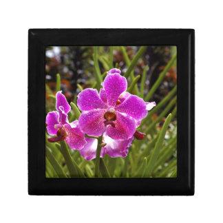 Purple flower inside National Orchid Garden Jewelry Box