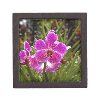 Purple flower inside National Orchid Garden Premium Trinket Box