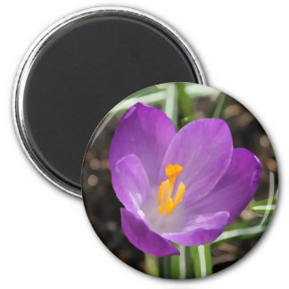 Purple Flower Oil Painting Refrigerator Magnet