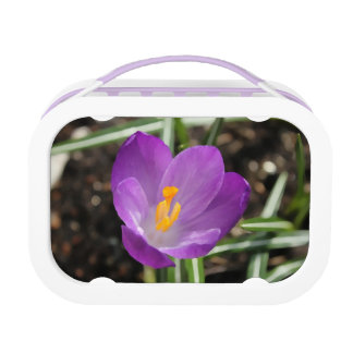 Purple Flower Oil Painting Yubo Lunch Box