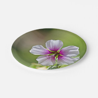 Purple Flower On Grainy Green Background 7 Inch Paper Plate