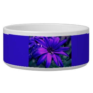 Purple Flower Dog Water Bowls