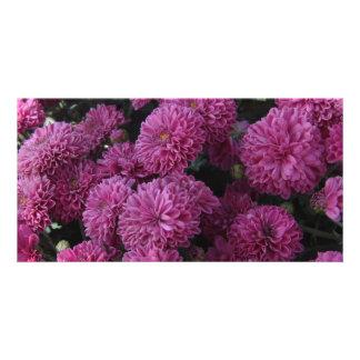 Purple Flower Photo Card