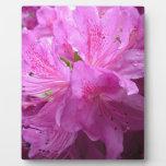 Purple Flower Placa Para Mostrar