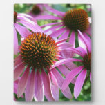 Purple Flower Placas De Madera
