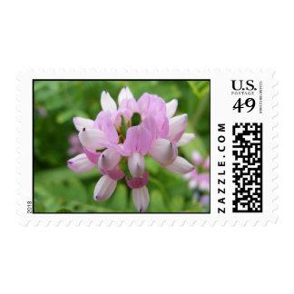 Purple Flower Postage