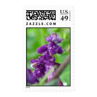Purple Flower Stamps