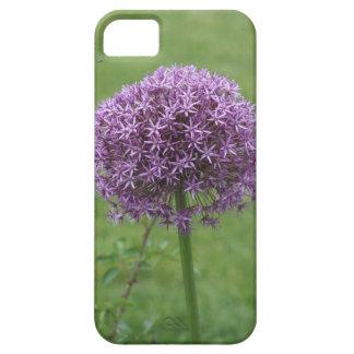 Purple Flower - Single iPhone SE/5/5s Case