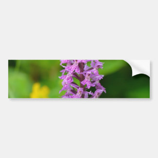 Purple flower spotted orchid protected species bumper stickers