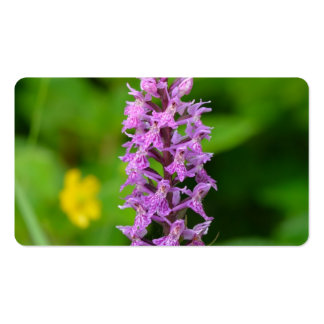 Purple flower spotted orchid protected species business card template