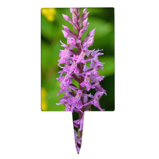 Purple flower spotted orchid protected species cake pick