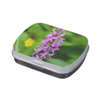Purple flower spotted orchid protected species jelly belly candy tins