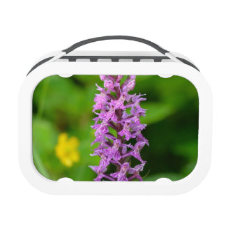 Purple flower spotted orchid protected species yubo lunch box