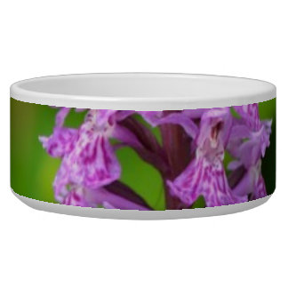 Purple flower spotted orchid protected species dog food bowls