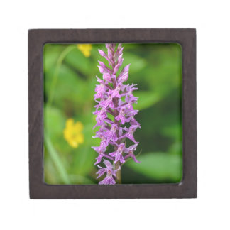 Purple flower spotted orchid protected species premium trinket box