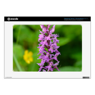 Purple flower spotted orchid protected species samsung chromebook decals