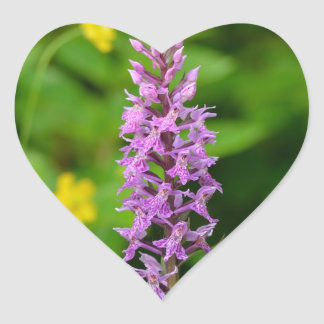 Purple flower spotted orchid protected species heart sticker
