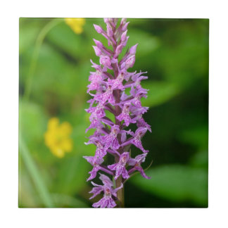 Purple flower spotted orchid protected species ceramic tiles