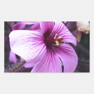 Purple Flower Rectangle Sticker
