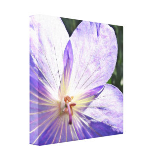Purple Flower Sunshine Canvas Print
