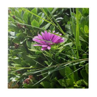 Purple Flower Tile