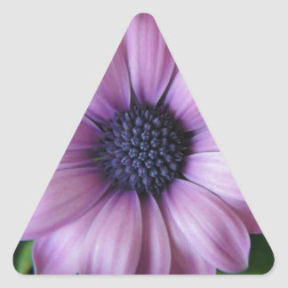 Purple Flower Triangle Sticker