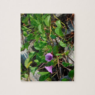 purple flower vines on rocks in florida jigsaw puzzle