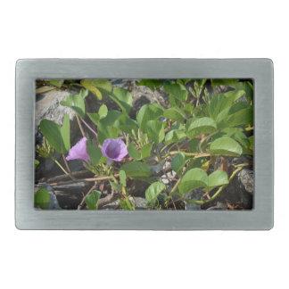 purple flower vines on rocks in florida rectangular belt buckles
