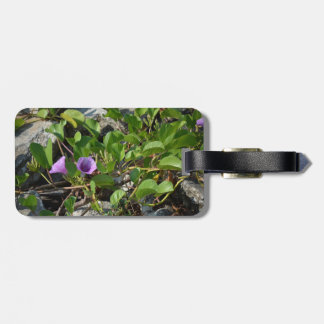 purple flower vines on rocks in florida tag for bags
