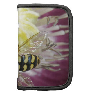 Purple Flower with Insect Organizers