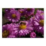 Purple Flowers and Bee Card