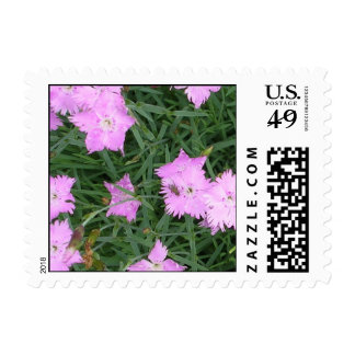 Purple flowers and fly postage stamp
