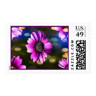 Purple Flowers Backlit Postage Stamp