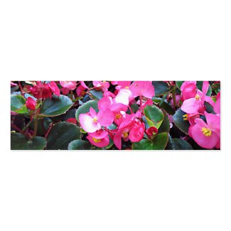Purple flowers bookmark profilecard