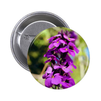 Purple flowers button