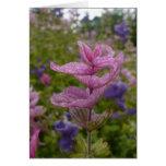 Purple flowers | Card