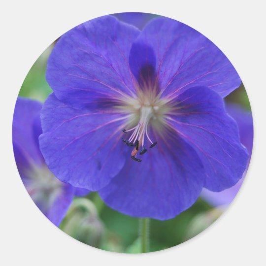 purple flowers classic round sticker