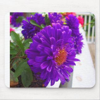 purple flowers ;D Mouse Pad